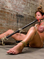 Glamour model Christina Carter bound tortured and made to cum.